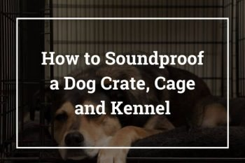 How to Soundproof Dog Crate/Cage and Kennel – Best Ways