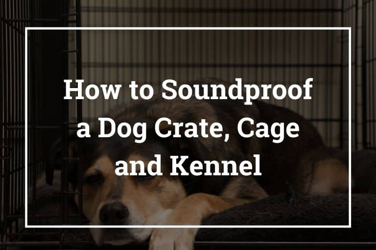 How to Soundproof a Dog Crate/Cage and Kennel – Best Ways