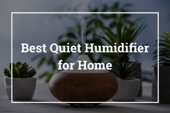 Best Quiet Humidifier for Home